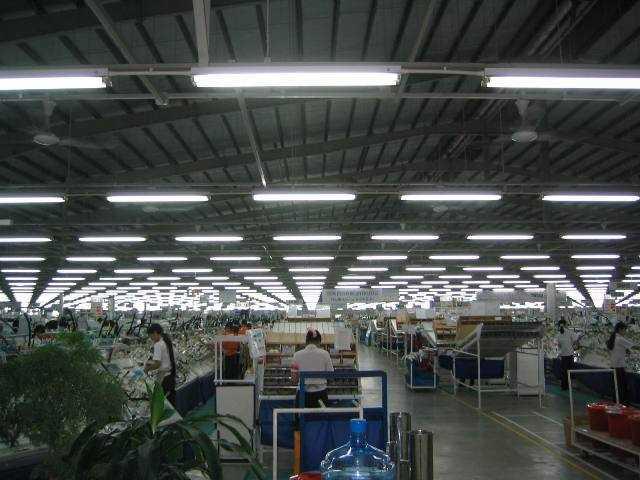 Đèn huỳnh quang chiếu sáng nhà xưởng
