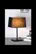 Đèn bàn DB 526