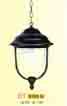 Đèn treo, thả DT 0123G