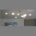 Đèn chùm nghệ thuật THCN 45-21