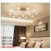 Đèn chùm LED THCN 65-20