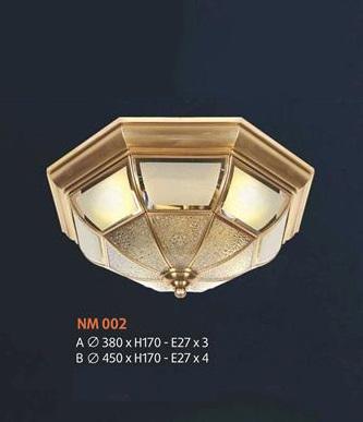 NM 002