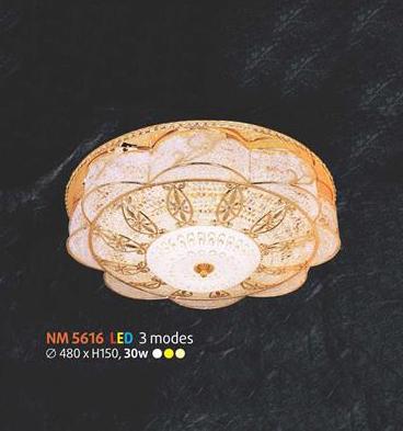 NM 5616