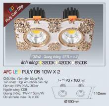 Đèn led chiếu sáng cao cấp AFC PULY 06 10WX2