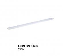 Đèn máng LION ĐÈN MÁNG LION 24W